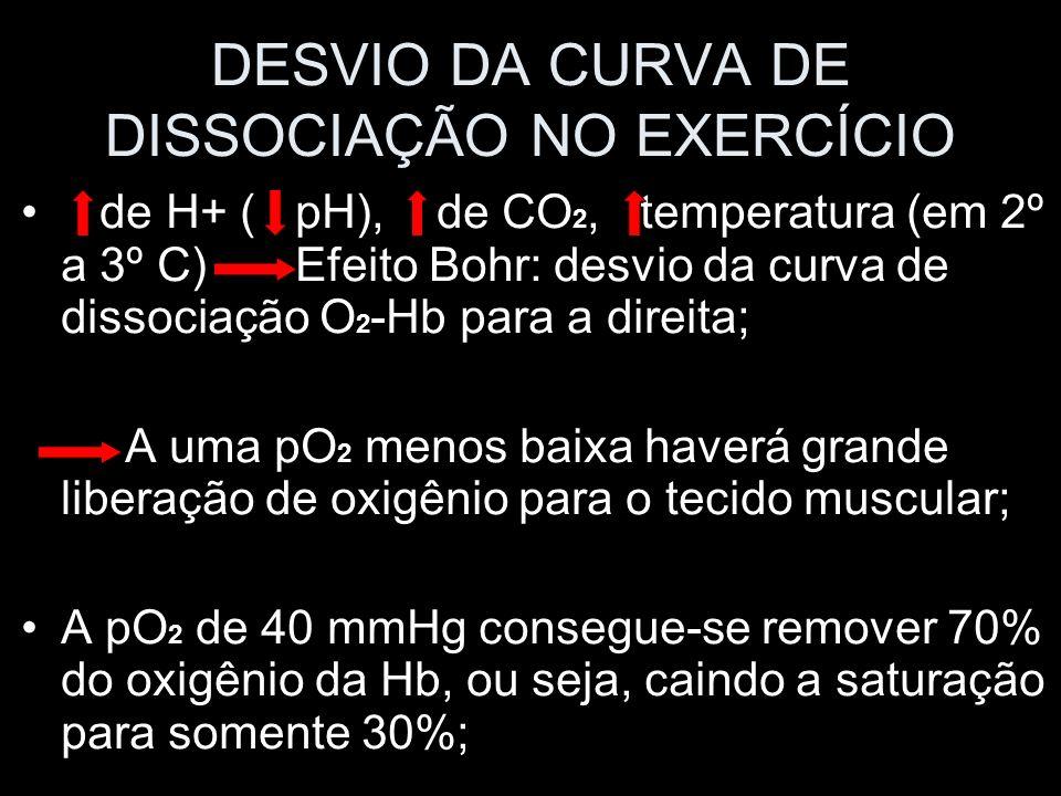 DESVIO DA CURVA DE DISSOCIAÇÃO NO EXERCÍCIO de H+ ( pH), de CO 2, temperatura (em 2º a 3º C) Efeito Bohr: desvio da curva de dissociação O 2 -Hb para