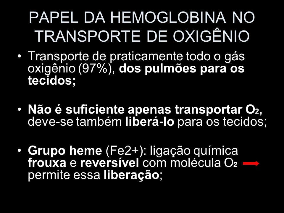PAPEL DA HEMOGLOBINA NO TRANSPORTE DE OXIGÊNIO Transporte de praticamente todo o gás oxigênio (97%), dos pulmões para os tecidos; Não é suficiente ape