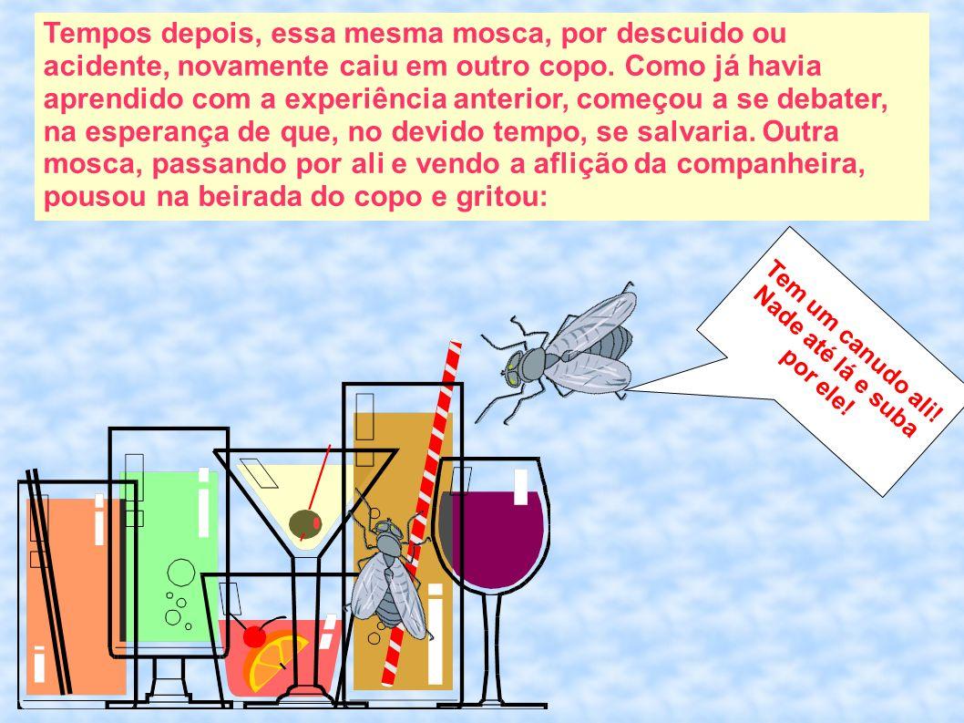 Tempos depois, essa mesma mosca, por descuido ou acidente, novamente caiu em outro copo. Como já havia aprendido com a experiência anterior, começou a
