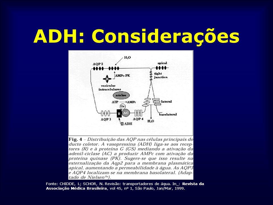 ADH: Considerações Fonte: CHIDDE, L; SCHOR, N. Revisão: transportadores de áqua. In_: Revista da Associação Médica Brasileira, vol 45, nº 1, São Paulo
