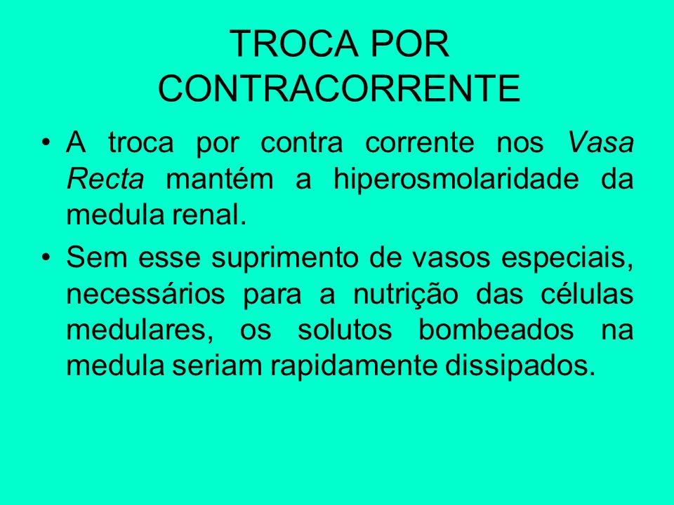 TROCA POR CONTRACORRENTE A troca por contra corrente nos Vasa Recta mantém a hiperosmolaridade da medula renal. Sem esse suprimento de vasos especiais