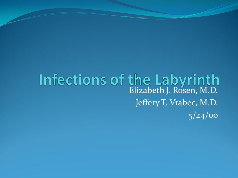 Elizabeth J. Rosen, M.D. Jeffery T. Vrabec, M.D. 5/24/00