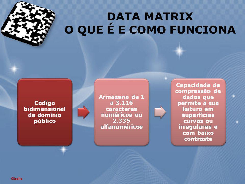 DATA MATRIX O QUE É E COMO FUNCIONA Giselle Código bidimensional de domínio público Armazena de 1 a 3.116 caracteres numéricos ou 2.335 alfanuméricos