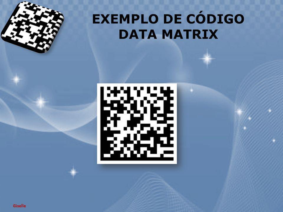 EXEMPLO DE CÓDIGO DATA MATRIX Giselle