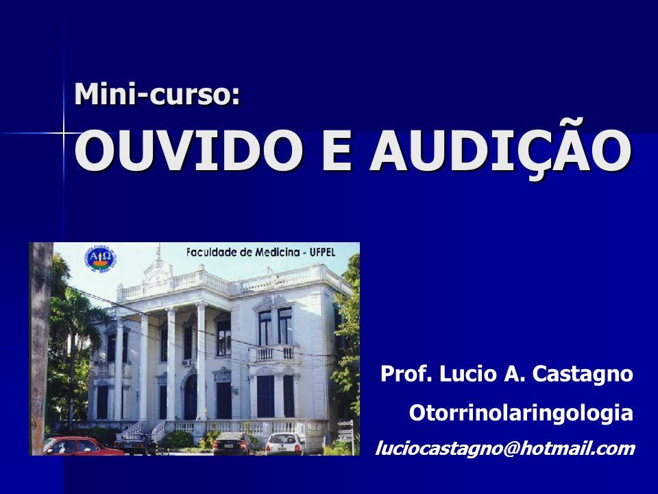 Mini-curso: OUVIDO E AUDIÇÃO Prof. Lucio A. Castagno Otorrinolaringologia luciocastagno@hotmail.com