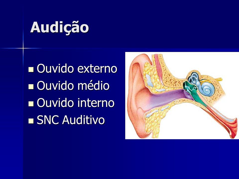 Audição Ouvido externo Ouvido externo Ouvido médio Ouvido médio Ouvido interno Ouvido interno SNC Auditivo SNC Auditivo