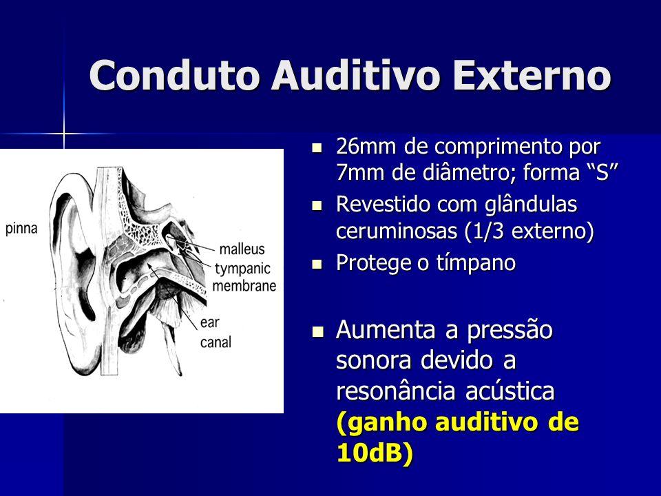 Limitações da audiometria Teste subjetivo: depende da informação do paciente Teste subjetivo: depende da informação do paciente Testa frequências enter 250 e 8000 Hz Testa frequências enter 250 e 8000 Hz