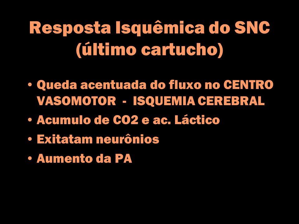 Resposta Isquêmica do SNC (último cartucho) Queda acentuada do fluxo no CENTRO VASOMOTOR - ISQUEMIA CEREBRAL Acumulo de CO2 e ac. Láctico Exitatam neu