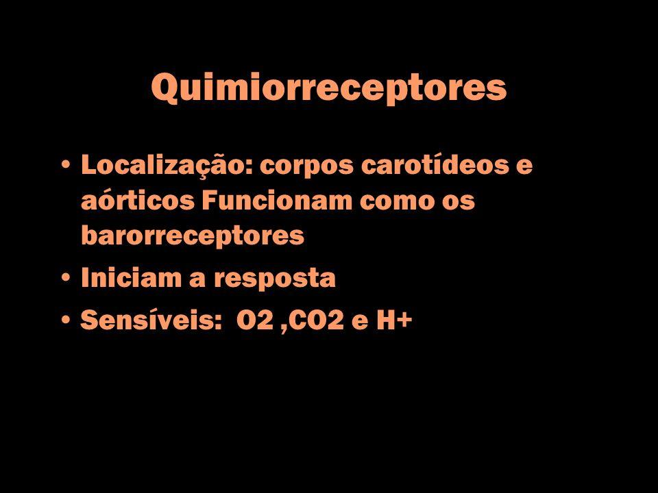 Quimiorreceptores Localização: corpos carotídeos e aórticos Funcionam como os barorreceptores Iniciam a resposta Sensíveis: O2,CO2 e H+