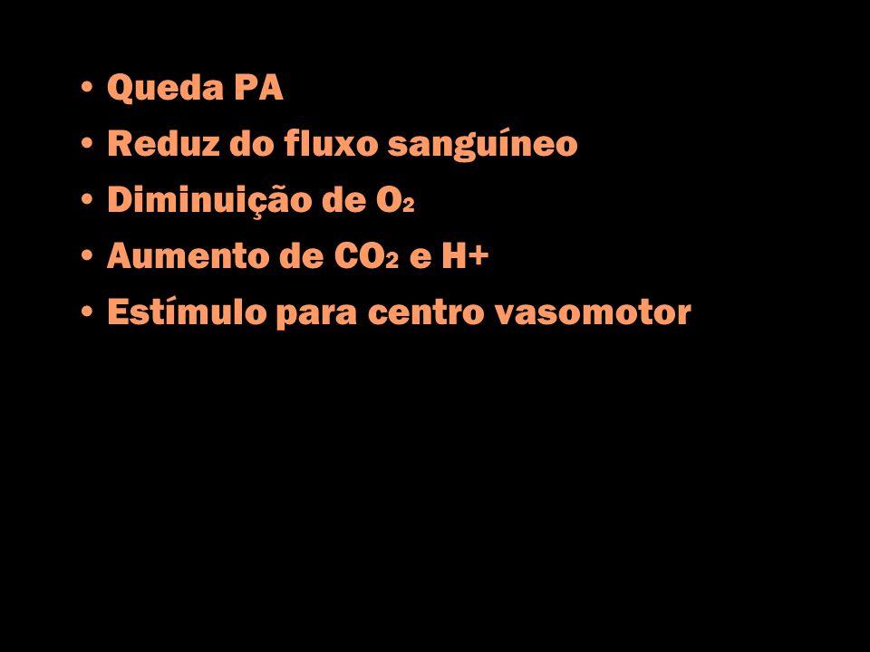 Queda PA Reduz do fluxo sanguíneo Diminuição de O 2 Aumento de CO 2 e H+ Estímulo para centro vasomotor
