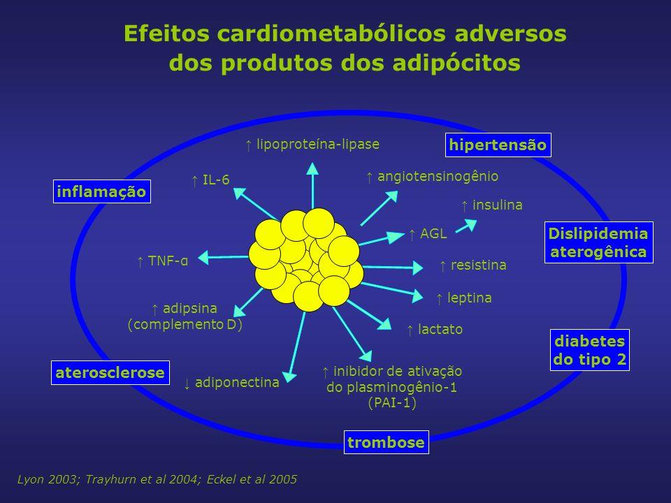 Efeitos cardiometabólicos adversos dos produtos dos adipócitos Adipose tissue IL-6 adiponectina leptina TNF-α adipsina (complemento D) inibidor de ativação do plasminogênio-1 (PAI-1) resistina AGL insulina angiotensinogênio lipoproteína-lipase lactato inflamação diabetes do tipo 2 hipertensão Dislipidemia aterogênica trombose aterosclerose Lyon 2003; Trayhurn et al 2004; Eckel et al 2005