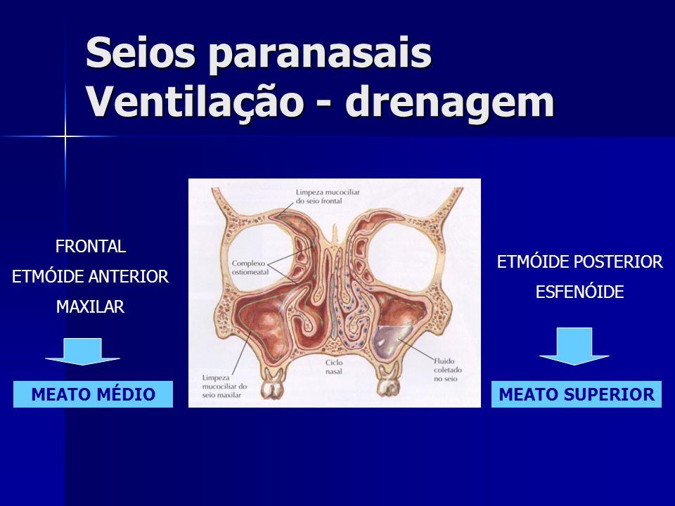 2- SINUSITE CRÔNICA ADULTOS e CRIANÇAS Sintomas semelhantes –duração de meses a anos (> 30 dias) –sintomas mais discretos Obstrução nasal Obstrução nasal Gotejamento retronasal (posterior) Gotejamento retronasal (posterior) Tosse crônica, halitose Tosse crônica, halitose