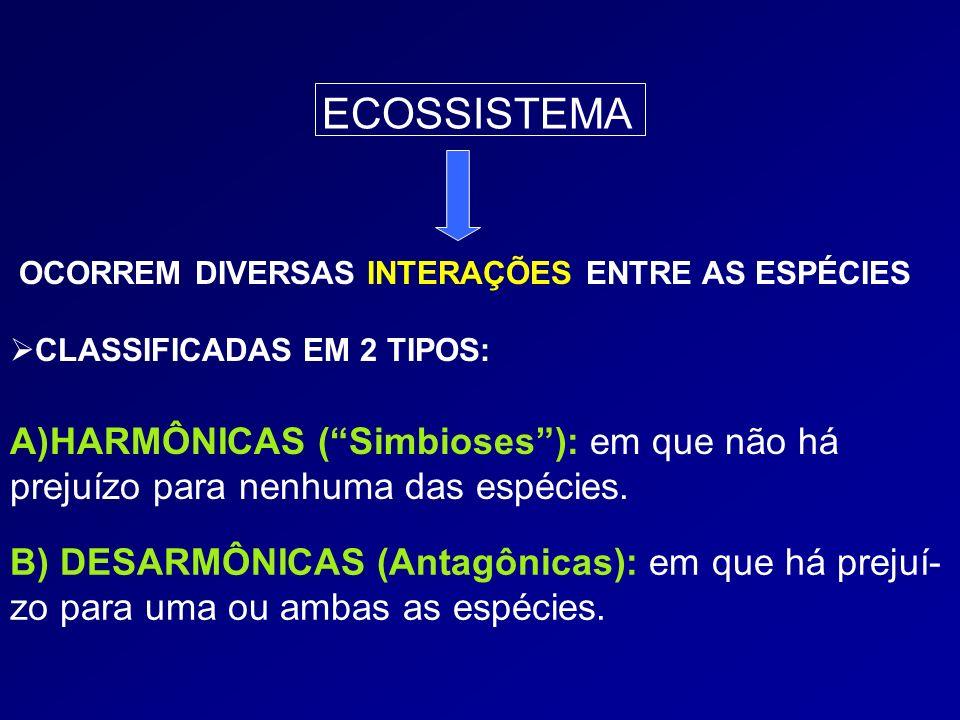 OCORREM DIVERSAS INTERAÇÕES ENTRE AS ESPÉCIES CLASSIFICADAS EM 2 TIPOS: A)HARMÔNICAS (Simbioses): em que não há prejuízo para nenhuma das espécies. B)