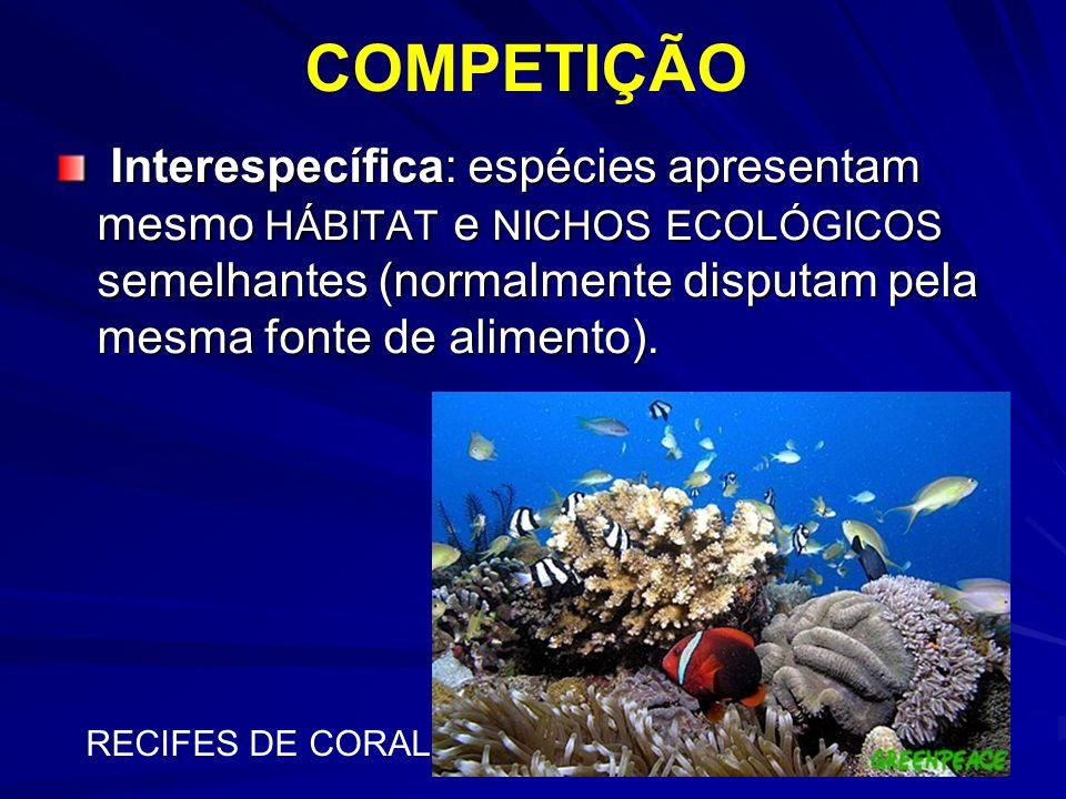 COMPETIÇÃO Interespecífica: espécies apresentam mesmo HÁBITAT e NICHOS ECOLÓGICOS semelhantes (normalmente disputam pela mesma fonte de alimento). Int