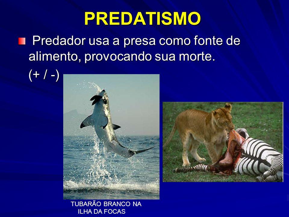PREDATISMO Predador usa a presa como fonte de alimento, provocando sua morte. Predador usa a presa como fonte de alimento, provocando sua morte. (+ /