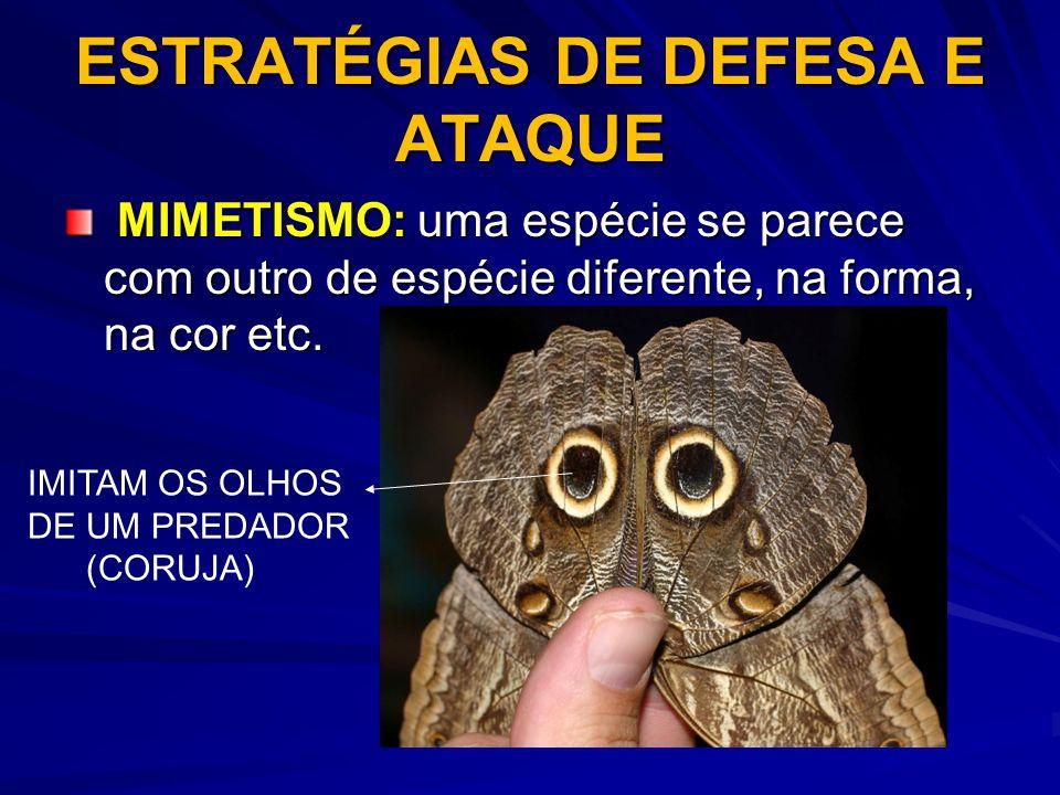 ESTRATÉGIAS DE DEFESA E ATAQUE MIMETISMO: uma espécie se parece com outro de espécie diferente, na forma, na cor etc. MIMETISMO: uma espécie se parece