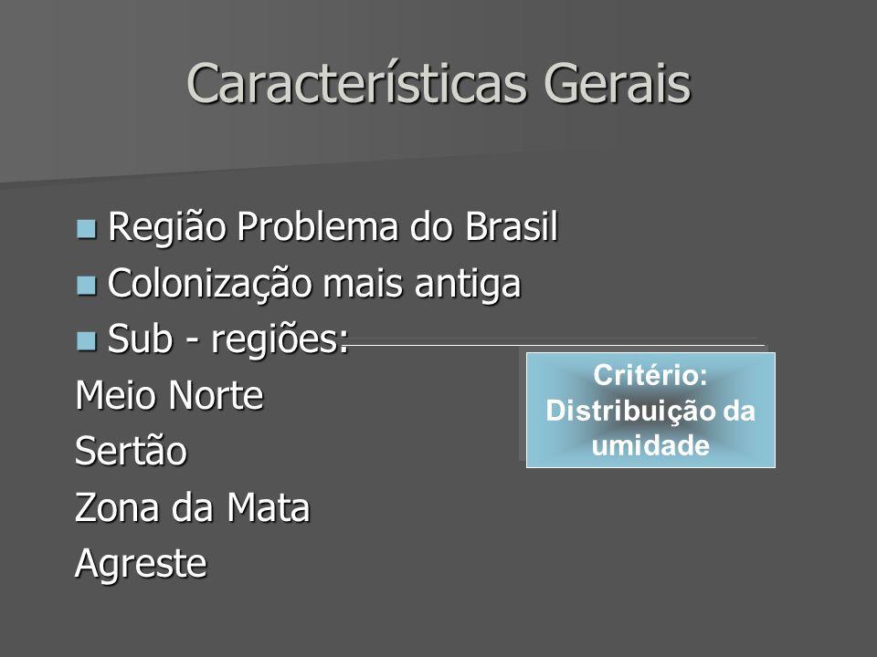Características Gerais Região Problema do Brasil Região Problema do Brasil Colonização mais antiga Colonização mais antiga Sub - regiões: Sub - regiõe