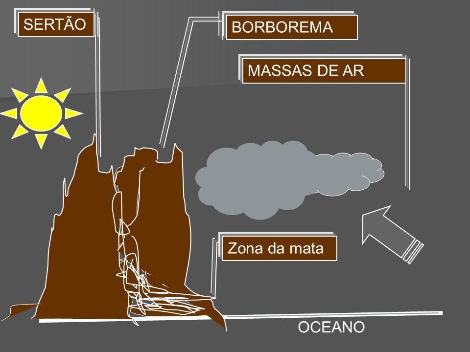 Zona da mata MASSAS DE AR BORBOREMA SERTÃO OCEANO