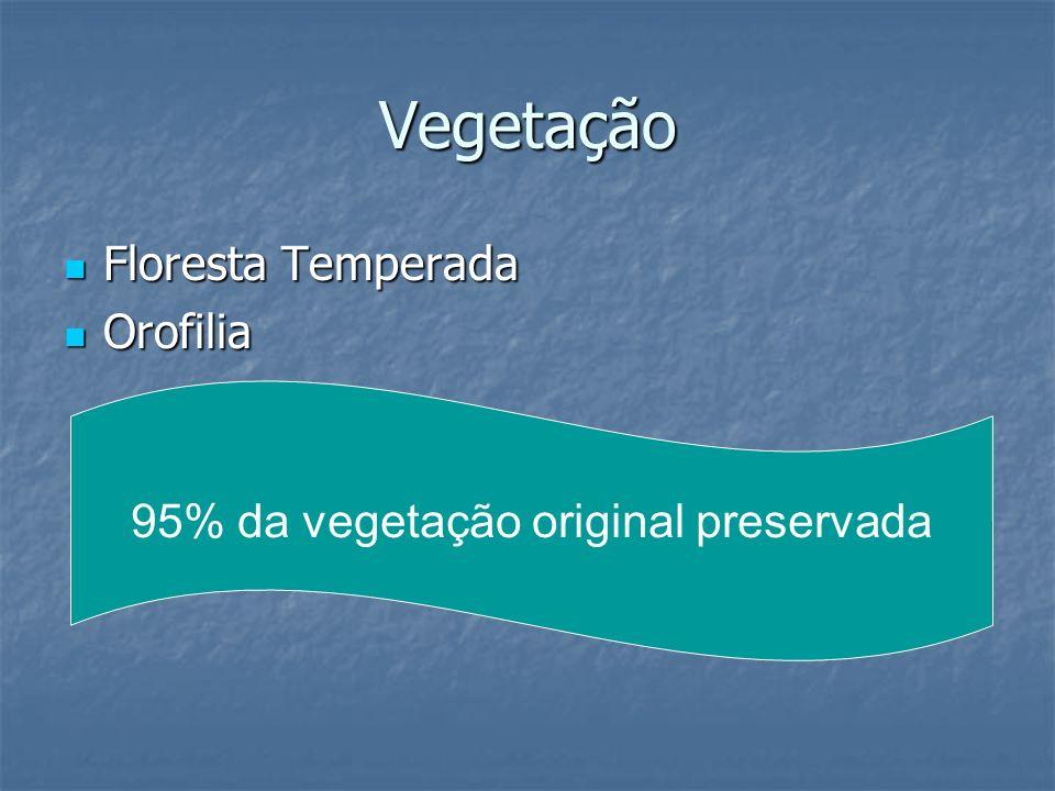 Vegetação Floresta Temperada Floresta Temperada Orofilia Orofilia 95% da vegetação original preservada