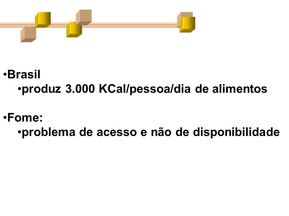Brasil produz 3.000 KCal/pessoa/dia de alimentos Fome: problema de acesso e não de disponibilidade