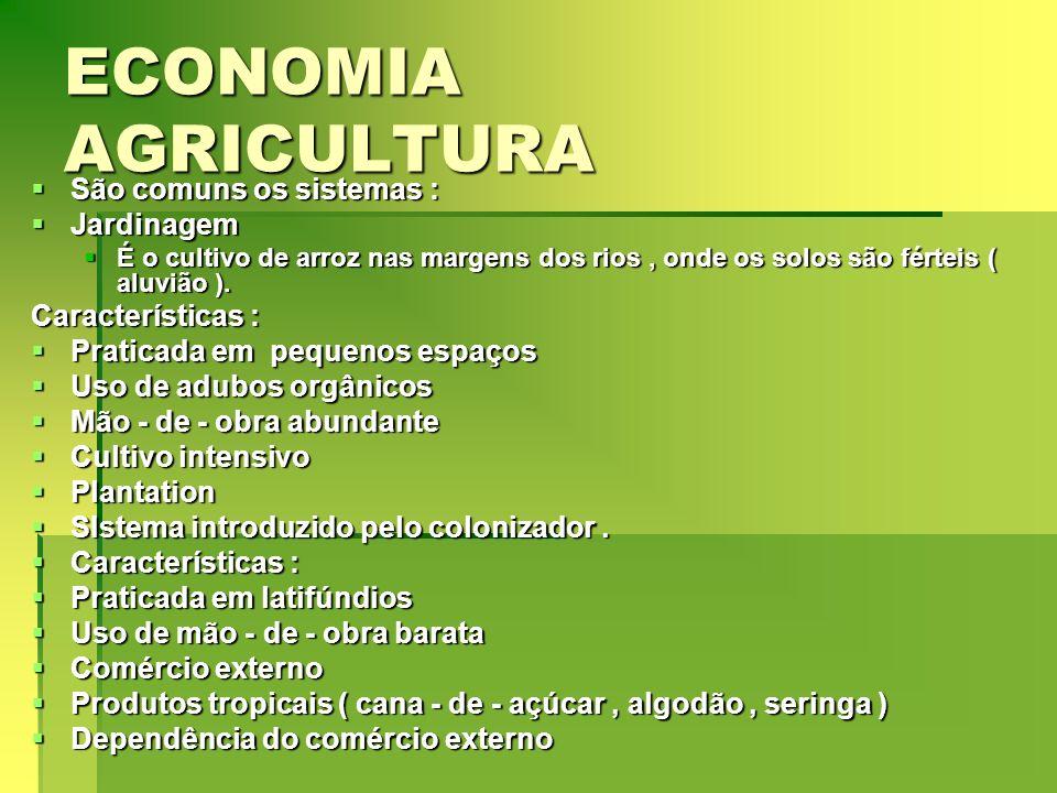 ECONOMIA AGRICULTURA São comuns os sistemas : São comuns os sistemas : Jardinagem Jardinagem É o cultivo de arroz nas margens dos rios, onde os solos