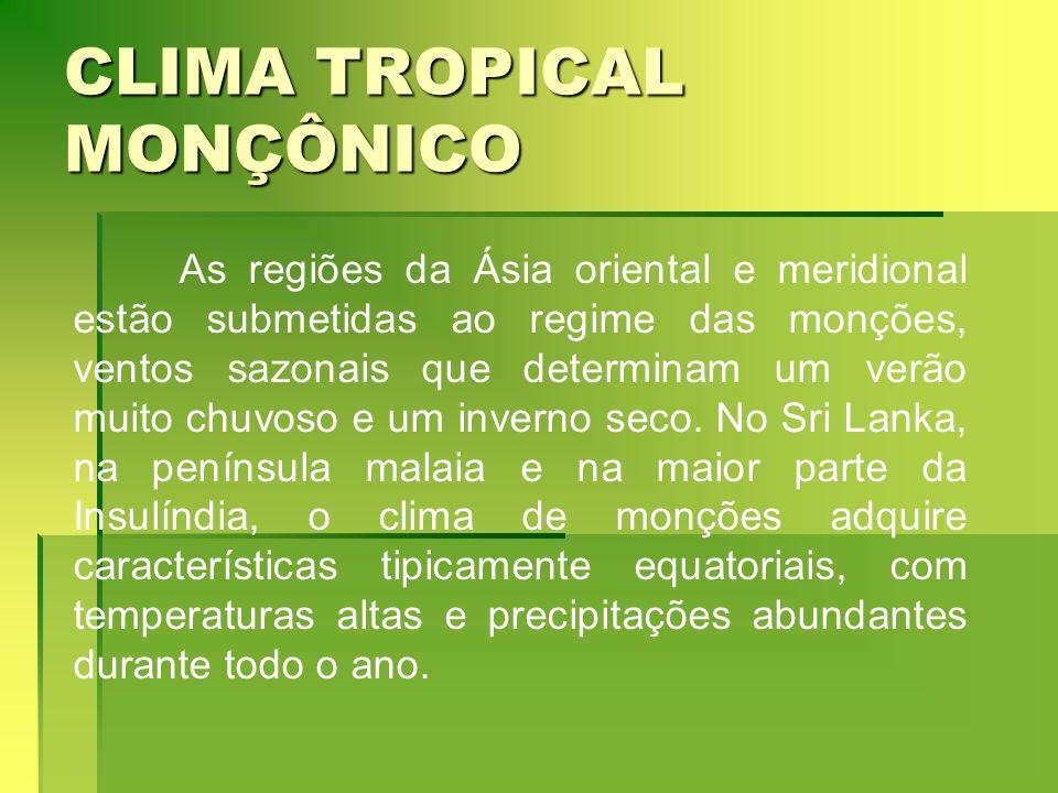 CLIMA TROPICAL MONÇÔNICO As regiões da Ásia oriental e meridional estão submetidas ao regime das monções, ventos sazonais que determinam um verão muit