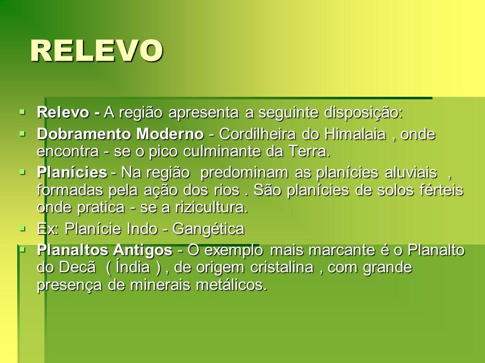 RELEVO Relevo - A região apresenta a seguinte disposição: Relevo - A região apresenta a seguinte disposição: Dobramento Moderno - Cordilheira do Himal