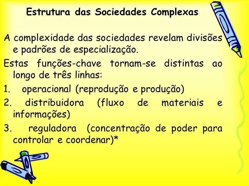 Estrutura das Sociedades Complexas A complexidade das sociedades revelam divisões e padrões de especialização. Estas funções-chave tornam-se distintas