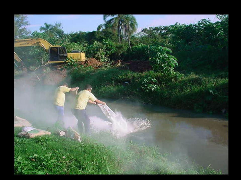 O rio foi contaminado e a captação de água ficou suspensa.