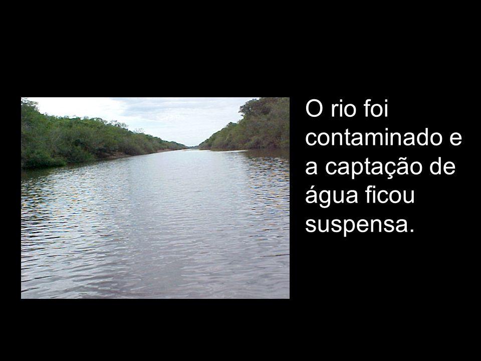 contaminação do arroio Passinhos (trecho de aproximadamente 5.700 metros) contaminação do rio Gravataí com o lançamento de 60 tipos de produtos químicos (em torno de 1.098 toneladas), interrupção do abastecimento de água na cidade(80 mil moradores sem água), mortandade de peixes no rio Gravataí, contaminação do solo e subsolo na área da MBN, Impactos agravantes