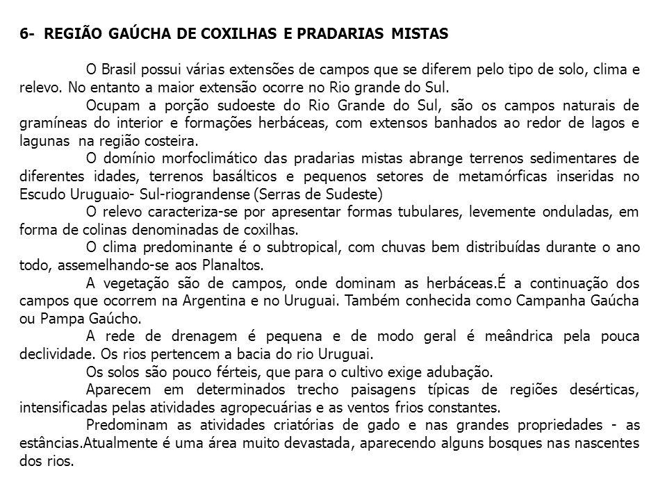 6- REGIÃO GAÚCHA DE COXILHAS E PRADARIAS MISTAS O Brasil possui várias extensões de campos que se diferem pelo tipo de solo, clima e relevo. No entant