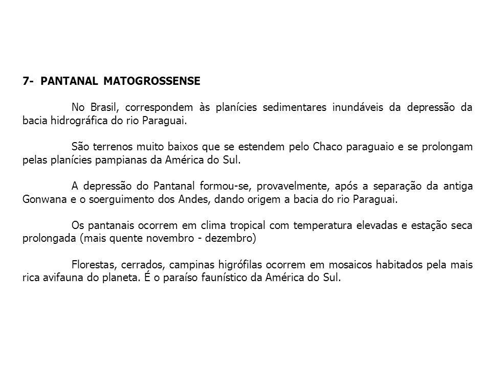 7- PANTANAL MATOGROSSENSE No Brasil, correspondem às planícies sedimentares inundáveis da depressão da bacia hidrográfica do rio Paraguai. São terreno