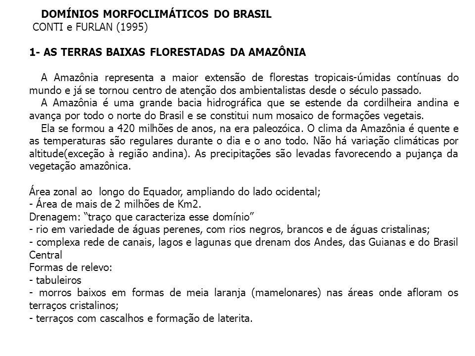 DOMÍNIOS MORFOCLIMÁTICOS DO BRASIL CONTI e FURLAN (1995) 1- AS TERRAS BAIXAS FLORESTADAS DA AMAZÔNIA A Amazônia representa a maior extensão de florest