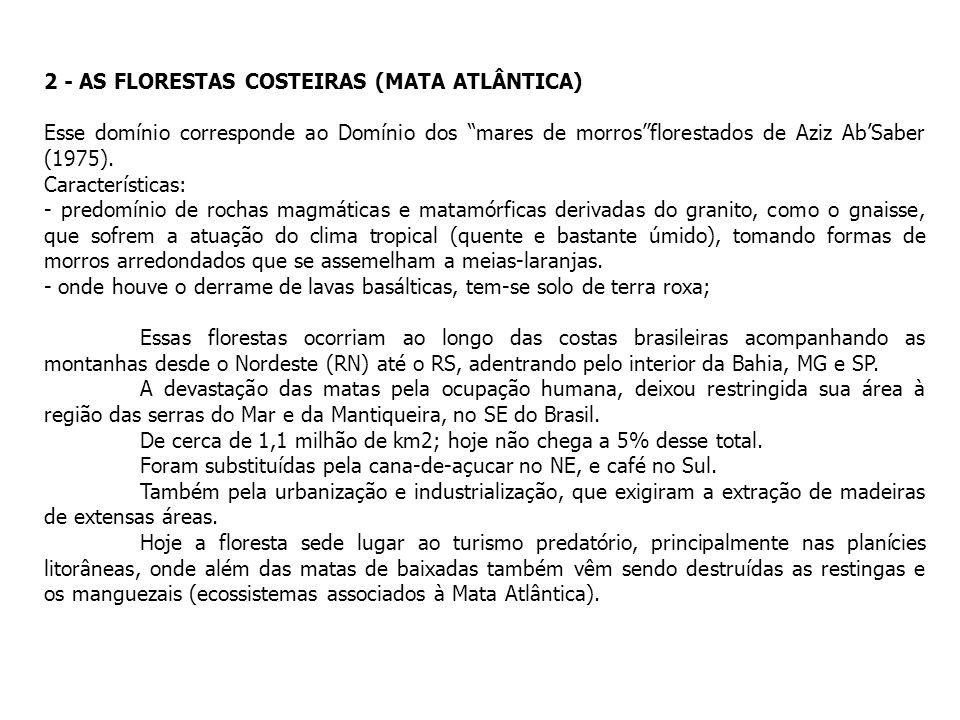 2 - AS FLORESTAS COSTEIRAS (MATA ATLÂNTICA) Esse domínio corresponde ao Domínio dos mares de morrosflorestados de Aziz AbSaber (1975). Características