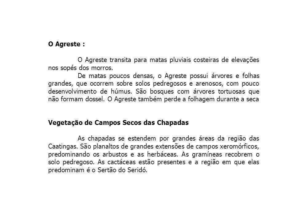 4 - CHAPADÕES COBERTOS POR CERRADOS E PENETRADOS POR FLORESTAS DE GALERIA Formas de relevo: - ocupam terrenos planos ou levemente convexizados do Brasil Central, com algumas ocorências isoladas na Amazônia, em São Paulo e Minas Gerais.