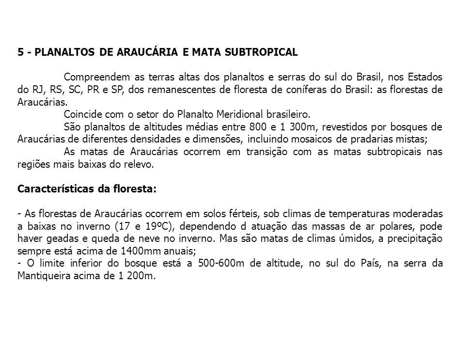 5 - PLANALTOS DE ARAUCÁRIA E MATA SUBTROPICAL Compreendem as terras altas dos planaltos e serras do sul do Brasil, nos Estados do RJ, RS, SC, PR e SP,