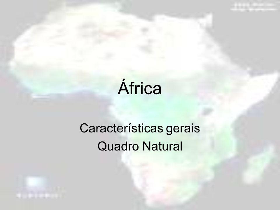 África Características gerais Quadro Natural
