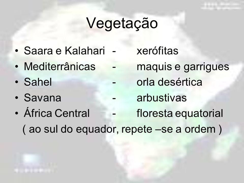 Vegetação Saara e Kalahari -xerófitas Mediterrânicas-maquis e garrigues Sahel-orla desértica Savana-arbustivas África Central-floresta equatorial ( ao