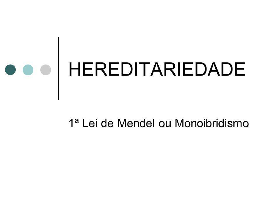 HEREDITARIEDADE 1ª Lei de Mendel ou Monoibridismo