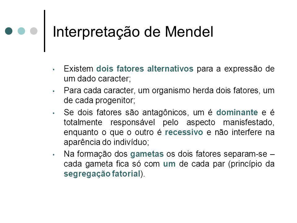 Interpretação de Mendel Existem dois fatores alternativos para a expressão de um dado caracter; Para cada caracter, um organismo herda dois fatores, u
