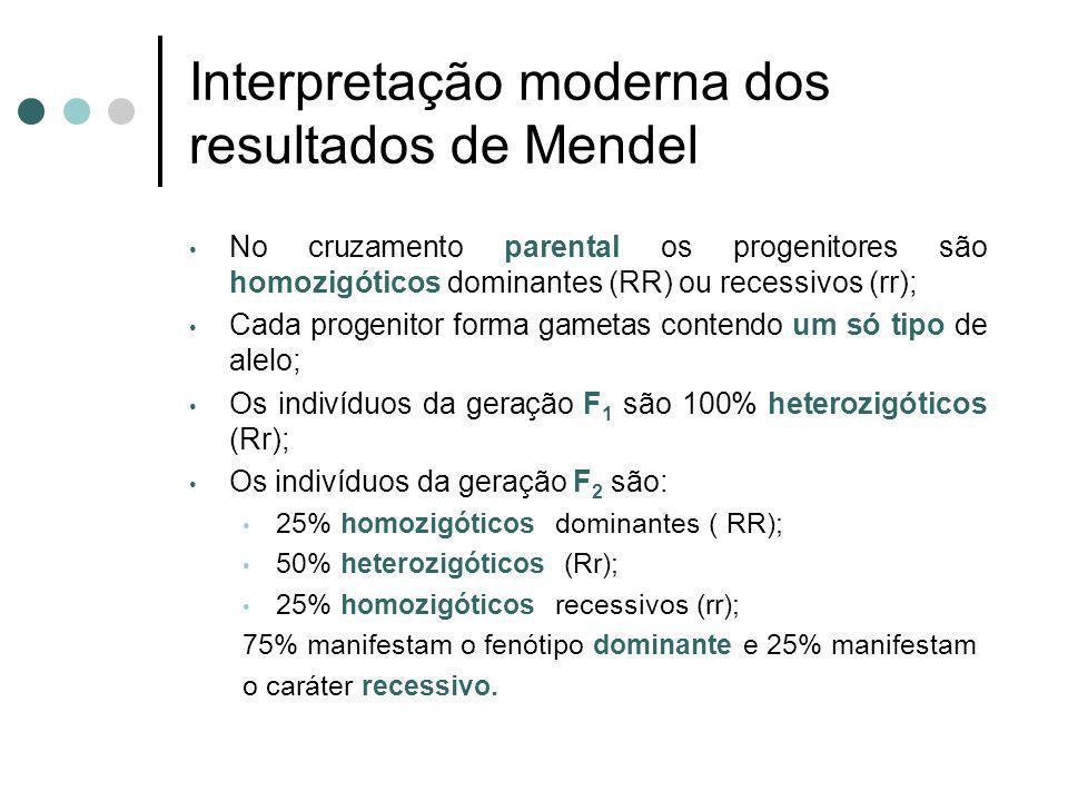 Interpretação moderna dos resultados de Mendel No cruzamento parental os progenitores são homozigóticos dominantes (RR) ou recessivos (rr); Cada proge