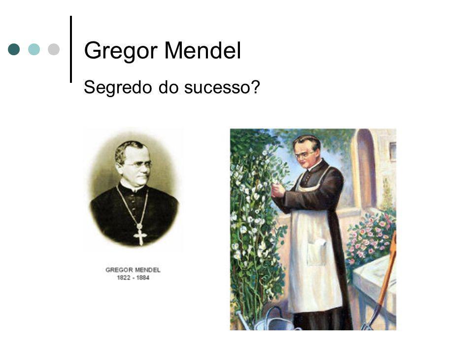 Gregor Mendel Segredo do sucesso?