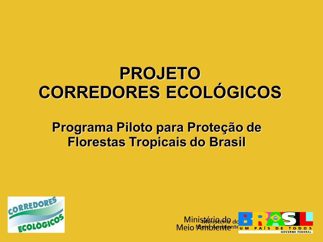 Corredor Central da Amazônia (CCA) APA de Presidente Figueiredo Caverna do Maroaga APA de Presidente Figueiredo Caverna do Maroaga: Reuniões de sensibilização (35 comunidades rurais, aproximadamente 800 participantes).