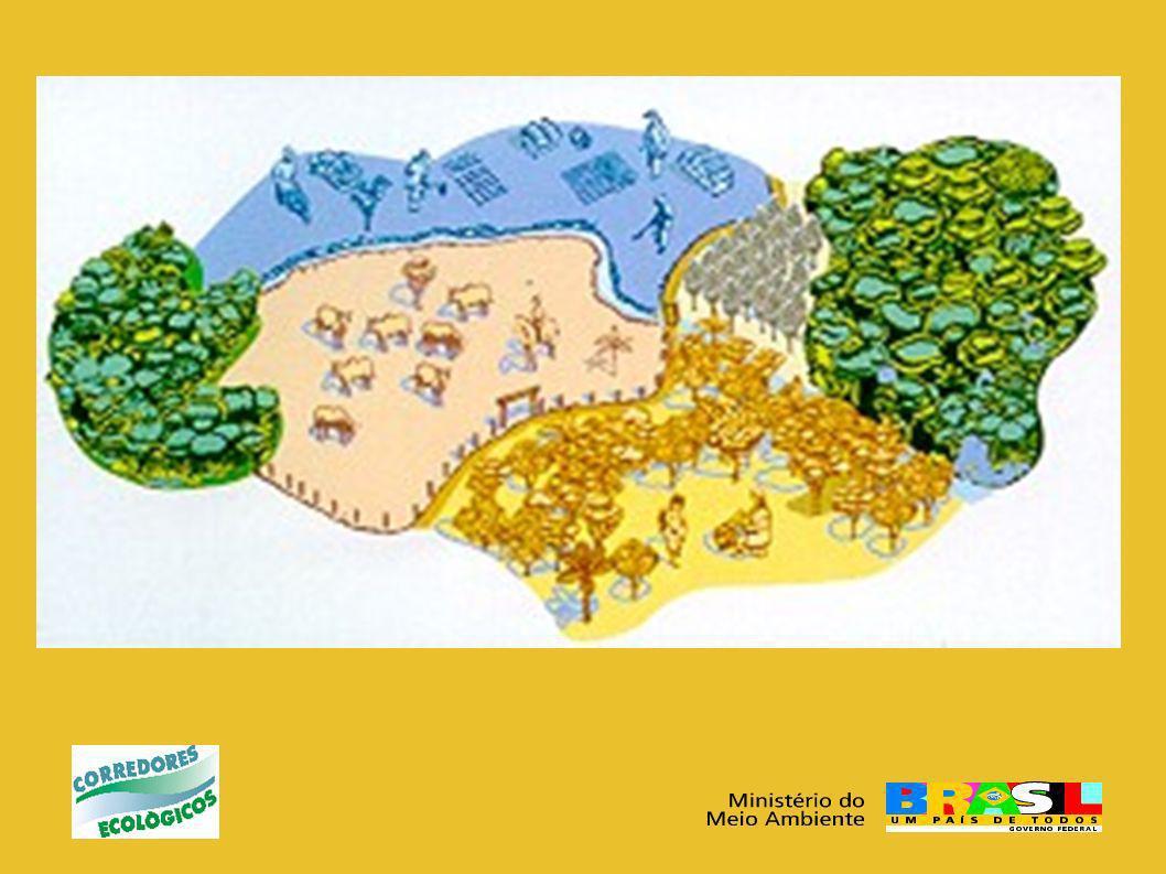 Unidade de Coordenação Geral CRS 514 – Bloco B – Loja 59 – 1o andar W3 Sul – Brasília - DF CEP: 70380-525 Tels: (61) 4009-9194; Fax: (61) 4009-9193 e-mail: corredores.ecologicos@mma.gov.br Contatos