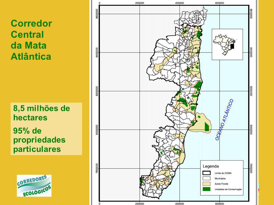 MMA Unidade de Coordenação Geral Programa Piloto para Proteção das Florestas Tropicais no Brasil Coordenação Agência de Assistência Técnica para facilitar contratos, aquisições e fluxos financeiros - PNUD Unidade de Coordenação Estadual Bahia Executores: IBAMA SEMARH ONGs Setor privado, etc.