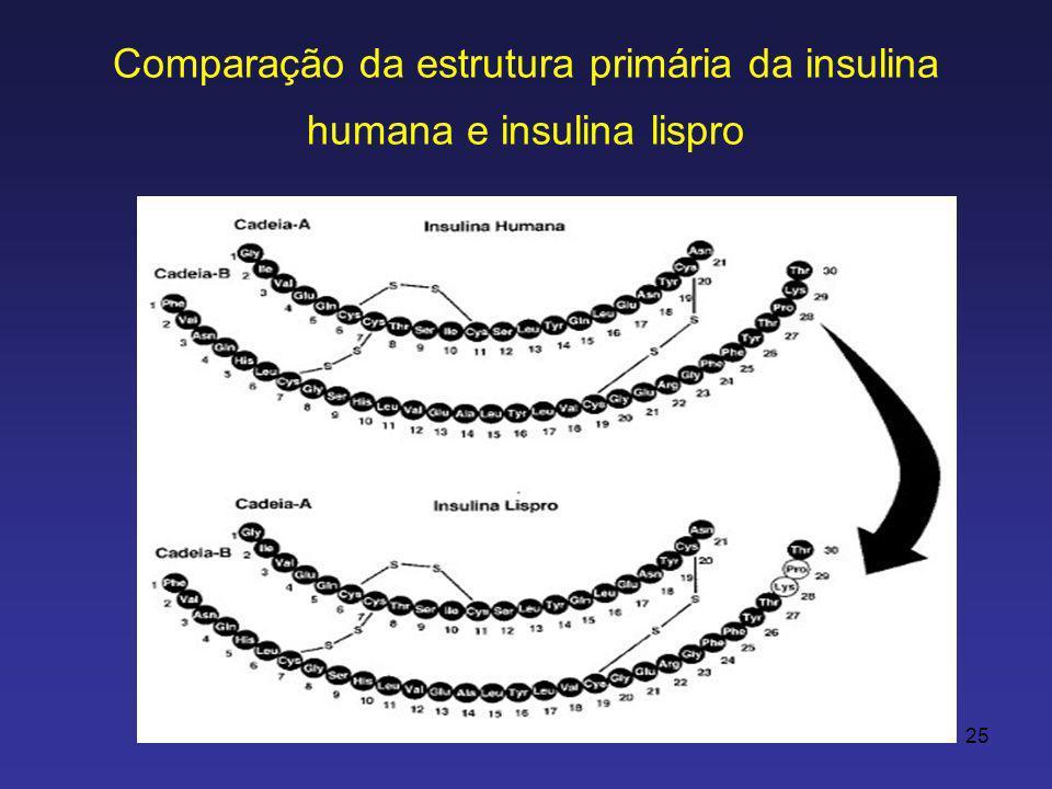 25 Comparação da estrutura primária da insulina humana e insulina lispro