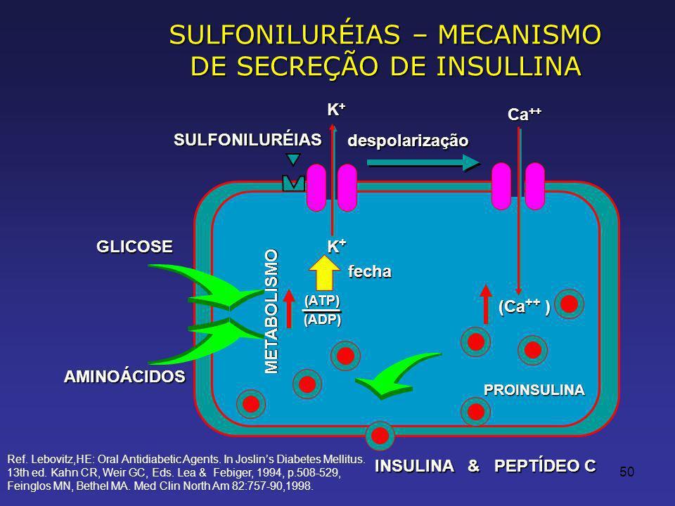 50 SULFONILURÉIAS – MECANISMO DE SECREÇÃO DE INSULLINA SULFONILURÉIAS despolarização GLICOSE AMINOÁCIDOS fecha (ATP) (ADP) Ca ++ (Ca ++ ) PROINSULINA METABOLISMO K+K+K+K+ K+K+K+K+ INSULINA & PEPTÍDEO C Ref.