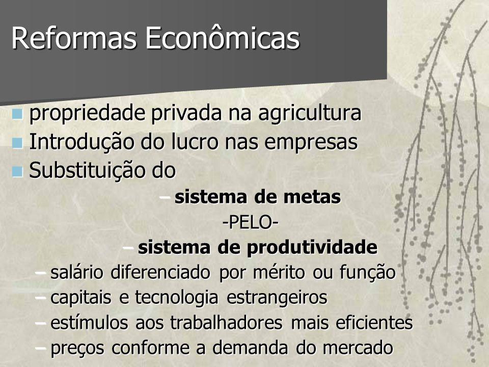 Reformas Econômicas propriedade privada na agricultura propriedade privada na agricultura Introdução do lucro nas empresas Introdução do lucro nas emp