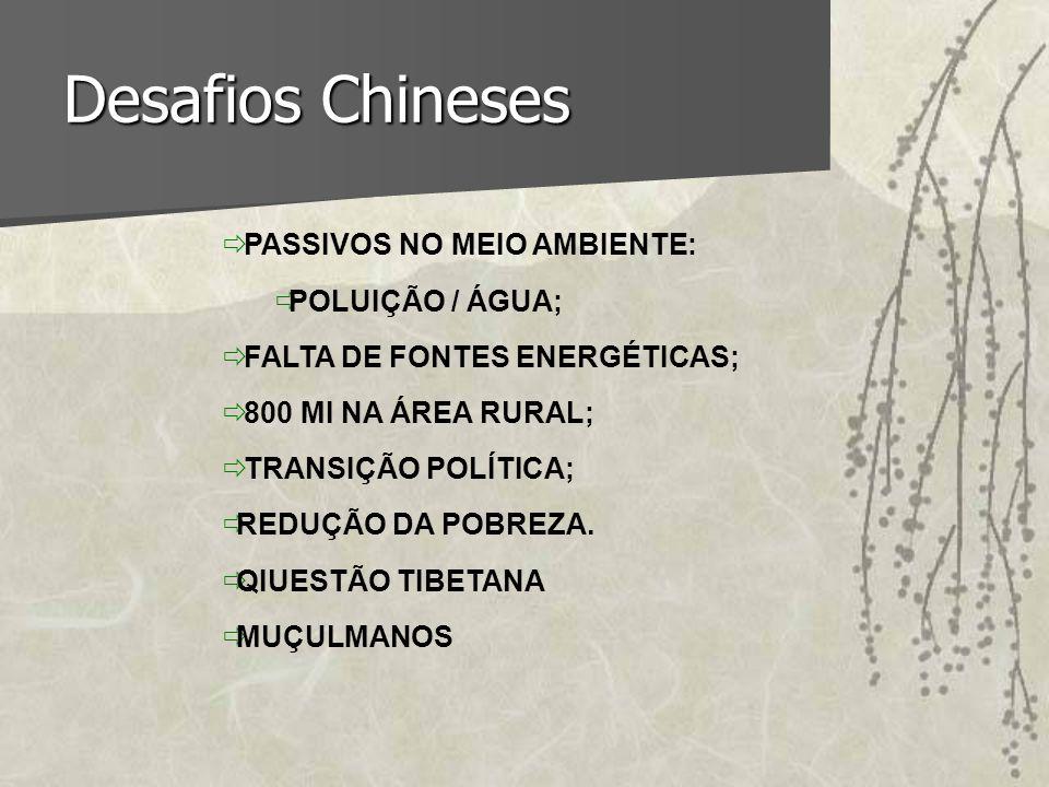 Desafios Chineses ð PASSIVOS NO MEIO AMBIENTE: ðPOLUIÇÃO / ÁGUA; ð FALTA DE FONTES ENERGÉTICAS; ð 800 MI NA ÁREA RURAL; ð TRANSIÇÃO POLÍTICA; ðREDUÇÃO