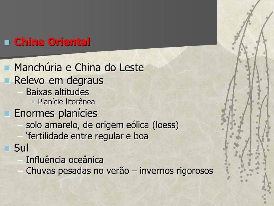China Oriental China Oriental Manchúria e China do Leste Manchúria e China do Leste Relevo em degraus Relevo em degraus –Baixas altitudes Planície lit